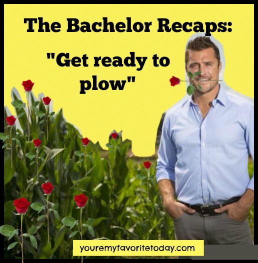 The Bachelor Recaps