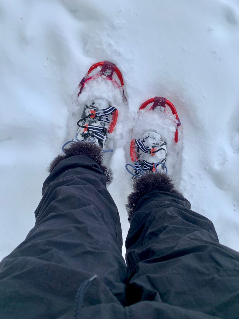 Snowshoes really do keep you on top of the snow!